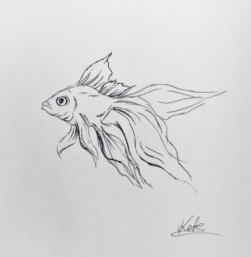 fish tattoo on ribs design