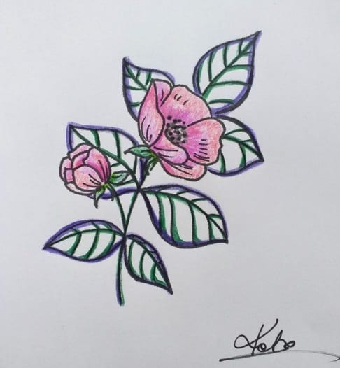 wild rose tattoo on ribs design
