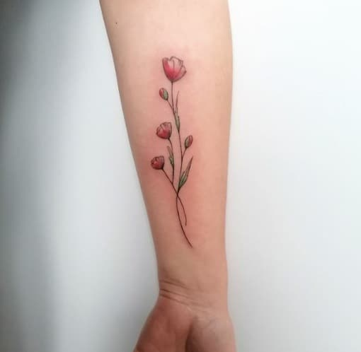 can you do this changing tattoo colors,